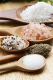 Verschiedene Arten des Salzes Stockbilder