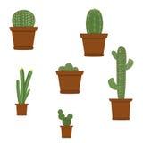 Verschiedene Arten des Vektors von dekorativen Ikonen der Kaktuspflanzen stellten lokalisiert auf weißem Hintergrund ein Stockfotos