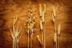 Verschiedene Arten von den Getreide, die auf Weinleseholz angezeigt werden, verschalen Lizenzfreies Stockbild