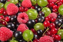 Verschiedene Arten von frischen Beeren schließen oben als Hintergrund Stockbilder