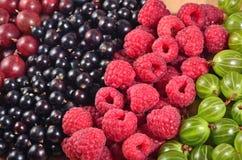 Verschiedene Arten von frischen Beeren schließen oben als Hintergrund Stockfotos