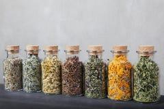 Verschiedene Arten von Kräutern für Tee innerhalb der Glasflaschen Lizenzfreies Stockbild