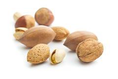 Verschiedene Arten von Nüssen in der Nussschale Stockbild