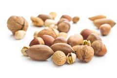 Verschiedene Arten von Nüssen in der Nussschale Lizenzfreies Stockfoto