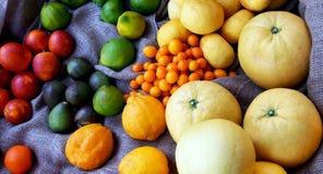 Verschiedene Arten von Zitronen Stockbild