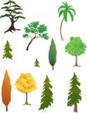 Verschiedene Bäume Stockbild