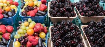Verschiedene Beeren im Verkauf auf einem Landbauernhofmarkt Lizenzfreie Stockfotos
