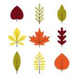 Verschiedene Blätter des Herbstes eingestellt in flache Art Rotes, grünes, gelbes, orange Blatt lokalisiert Stockfotos