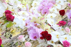 Verschiedene Blumen für Dekoration Stockbilder