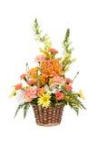 Verschiedene Blumen im Korb auf Weiß Stockbilder