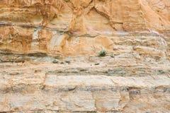 Verschiedene Bodenbeschaffenheitsschichten Stockfoto