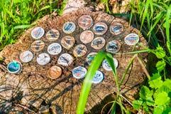 Verschiedene Brauereien die Flaschenkapseln, die in einem Baumstumpf gehaftet werden lizenzfreie stockbilder