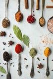 Verschiedene bunte indische Gewürze und Kräuter in den silbernen Löffeln auf weißem Hintergrund Lizenzfreies Stockbild