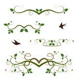 Verschiedene dekorative Grünstrudel Stockbild