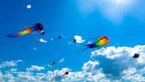Verschiedene Drachen, die auf den Himmel fliegen Lizenzfreies Stockbild