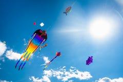 Verschiedene Drachen, die auf den Himmel fliegen Lizenzfreie Stockfotografie