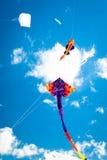 Verschiedene Drachen, die auf den Himmel fliegen Stockbild