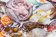 Verschiedene exotische Meeresfrüchte auf dem Zähler des Fischmarktes Rohe und frische Fische, Krake, Krabben, Garnelen im Eis sel Stockfotografie