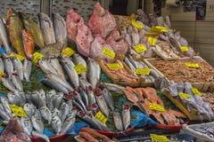 Verschiedene Fische auf den Gegenfischen kaufen in Istanbul Lizenzfreies Stockbild