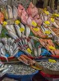 Verschiedene Fische auf den Gegenfischen kaufen in Istanbul Stockbilder