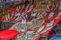 Verschiedene Fische auf den Gegenfischen kaufen in Istanbul Lizenzfreie Stockbilder