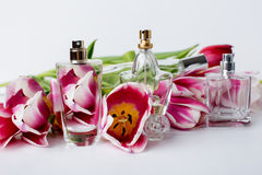 Verschiedene Flaschen Parfüm Stockfotos