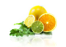 Verschiedene Früchte Lizenzfreie Stockfotos