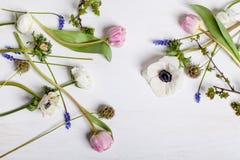 Verschiedene Frühlingsblumen auf weißem Holz Stockbild
