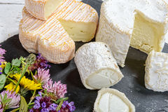 Verschiedene französische Käse Stockfotografie