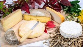 Verschiedene französische Käse produzierten in den Alpenbergen Stockbild
