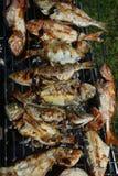 Verschiedene frische Fische auf dem Grill Stockfotografie