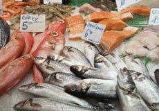 Verschiedene frische Fische auf Eis Stockfotos