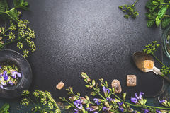 Verschiedene frische heilende Kräuter und Blumen, Teesieb, Löffel und Bonbons auf dunklem Hintergrund, Draufsicht Stockfotografie