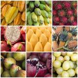 Verschiedene Frucht-Collage Stockfotografie