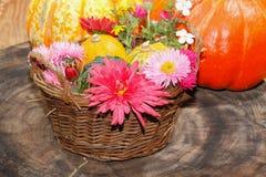 Verschiedene Gartenblumen der Blumen und dekorative Kürbisse in einem Korb Lizenzfreie Stockfotos