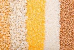 Verschiedene Getreide Lizenzfreie Stockfotos