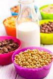Verschiedene Getreidearten und Milch Stockfotografie