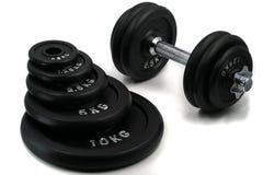 Verschiedene Gewichte für das Bodybuilden mit dem Dummkopf lokalisiert auf weißem Hintergrund stockfotografie