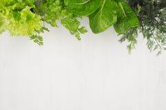 Verschiedene grüne Zweige für Frühlingssalat auf weißem hölzernem Hintergrund, Draufsicht, dekorativer Rahmen Lizenzfreie Stockfotos
