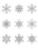 Verschiedene graue Schneeflocken Stockfotos