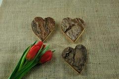Verschiedene Herzen Stockfotografie