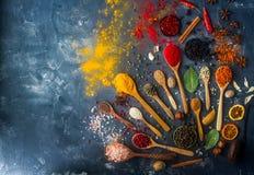 Verschiedene indische Gewürze in den hölzernen Löffeln und Metallschüsseln, Samen, Kräuter und Nüsse, Draufsicht Stockfotografie