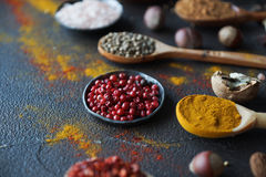 Verschiedene indische Gewürze in den hölzernen Löffeln und Metallschüsseln und -nüsse auf dunkler Steintabelle Bunte Gewürze, sel Lizenzfreie Stockfotos