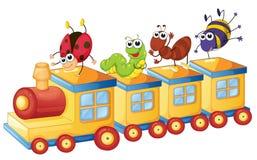 Verschiedene Insekten auf Zug Stockbilder