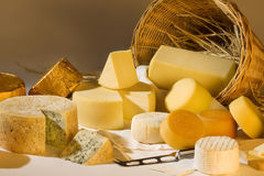 Verschiedene Käseprodukte Lizenzfreie Stockbilder