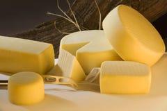Verschiedene Käseprodukte Stockfotografie