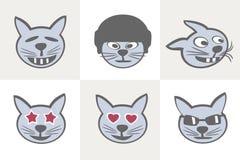 Verschiedene Katze Grimassen Lizenzfreies Stockfoto