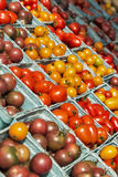 Verschiedene Kirsch- und Traubentomaten am Markt eines Landwirts Lizenzfreies Stockfoto