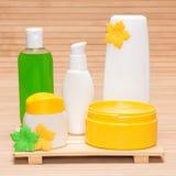 Verschiedene Kosmetik- und Badekurortprodukte Stockfotos
