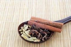 Verschiedene Kräuter und Gewürze mit hölzernem Löffel auf Bambusmatte Stockfotografie